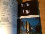 Nahke, Peter & Peter Wirtz - Underwater Guide Maldives - Fish