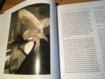 Bos, Paul C - De Uilen Tuin - dagboek van een Uilen Familie (Uilentuin)