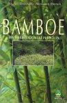 Doesburg, Jan van & Biemen, Hans van - BAMBOE Een Verrassende Plant in uw Tuin - In zeer goede staat!