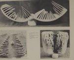Duckworth, Ruth; Westphal, Alice - RUTH DUCKWORTH [exhibition catalogue].