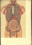 DR J.T.BUMA - EERSTE MEDISCHE SYSTEMATSCH INGERICHTE ENCYCLOPAEDIE DEEL I
