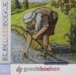 Klaasse- den Haan, Ditteke - Bijbelleesboekje OT deel 8 *nieuw* --- David