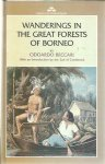 BECCARI, Odoardo - Wanderings in the Great Forests of Borneo. With an Introduction by the Earl of Cranbrook.