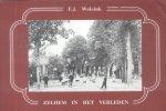 Wolsink, F.J. - Zelhem in het verleden [oude ansichten]