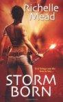 Mead, Richelle - Storm Born