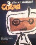 Stokvis, Willemijn - 3 dimensionaal Cobra : werk in hout, klei, metaal, steen, gips, afval, polyester, brood, keramiek