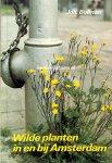 Bolman, Joh. - Wilde planten in en bij Amsterdam