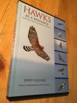 Liguori, Jerry - Hawks at a Distance - Identification of Migrant Raptors