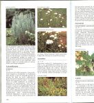 Dijk, Hanneke van .. Fotografie : George M. Otter - Geillustreerde  Borderplanten Encyclopedie