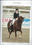 Brüger, Henk e.a. - L`ANNÉE HIPPIQUE 1993/1994