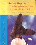 Sheldrake, Alfred Rupert Sheldrake (born 28 June 1942)  Vertaling  Anders  Pieterse  Omslag ontwerp Studio Jan de Boer - Honden weten wanneer hun baas thuiskomt  Een onderzoek naar de mysterieuze vermogens van dieren