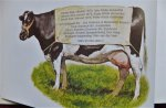 Poortvliet, Rien - TE HOOI EN TE GRAS. Een boek over boeren, vee en boerderijen en zo meer