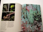 Line, Less - The Audubon Society Book of Insects