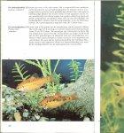 Frank Stanislav en de Nederlandse   bewerking van Hans Nieuwendijk - Aquariumvissen in woord en beeld  met 405 foto's waarvan 193 in kleur