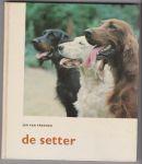 Rheenen, Jan van - De Setter