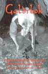 Johnson, N.J. and Wallis, R.J. - Galdrbok; practical heathen runecraft, shamanism and magic