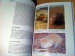 Triggs, Barbara & Ross Goldingay - The Wombat - Common Wombats of Australia