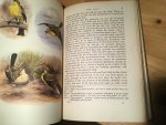 Smith, Stuart - The Yellow Wagtail - NNMonograph (Gele Kwikstaart)