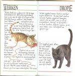 Westering, Francien. van  .. En het lapje van Freddy Met leuke Illustraties - Franciens katten  ..   Een bundeling van de mooiste columns uit Margriet..