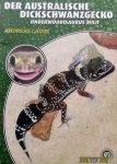 Laube, Andreas - Der Australische Dickschwanzgecko / Underwoodisaurus mili