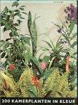 Kromdijk, G. .. de kleuren foto's  zijn van Rein Heij te  Wageningen - Het nieuwe kamer plantenboek  .. 200 Planten in kleur