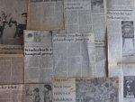 Blink, Inge van den - Aantal (9) knipsels: recensies kinderboeken 1981/1982