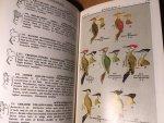 Lekagul, Boonsong & EW Cronin - Bird Guide of Thailand - second rev edition