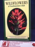 Buchanan, Hayle - Wild Flowers of South Western Utah / a field guide to Bryce Canyon, Cedar Breaks and surrounding Plant Communities