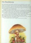 Vogl Cristl  die zorgde voor tekst  en  illustraties - Elfenpuzzelboek