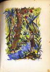 Bermann, Richard A. - Das Urwaldschiff. Ein Buch vom Amazonenstrom. Mit 8 Aquarellen von Franz Heckendorf