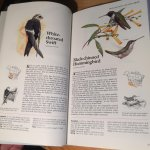 Reader's Digest, Ray Harris Ching, Cassidy, AE Gilbert en vele anderen - Book of North American Birds