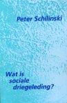 Schilinski, Peter - Wat is sociale driegeleding?