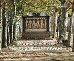 Ralf Beil Philipp Gutbrod - Bernhard Hoetger The Plane Tree Grove