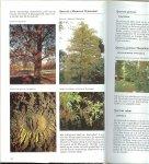 Vermeulen, Nico  ..  Tekst Hanneke van Dijk  .. Fotografie George M. Otter  .. Omslag ontwerp Tom Wienbelt - Bomen en Struiken  Geïllustreerde  encyclopedie. Alles wat u altijd al wilde weten over bomen en struiken.