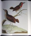 Buffon - All the World's Birds / Buffon's Illustrated Natural History
