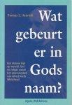 Thomas E. Hosinski - Wat gebeurt er in Gods naam? Een nieuwe kijk op wereld, God en religie vanuit het procesdenken van Alfred North Whitehead