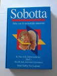 Sobotta - Atlas van de menselijke anatomie / 1 hoofd hals bovenste extremiteit / druk 1