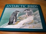 Parmelee, David Freeman - Antarctic Birds, Ecological and Behavioral Approaches