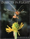 Brackenbury, John - Insects in Flight