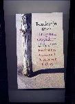 Büch, Boudewijn - Terug naar Oppidum - Drie romans over de jeugd van Winkler Brockhaus - Het Dolhuis; Geestgrond; De Bocht van Berkhey