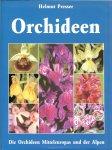 Presser, Helmut - Orchideen, die Orchideen Mitteleuropas und der Alpen ..  een boek om in te grasduinen dus uren Orchideeën plezier
