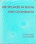 Adams, George / Whicher, Olive - Die Pflanze in Raum und Gegenraum. Elemente einer neuen Morphologie