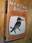 Miksch Sutton, George - Mexican Birds, First Impressions