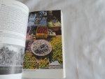 Mohamed Medani Elsayed; Willy Siegers - Reishandboek Oman en de Verenigde Arabische Emiraten