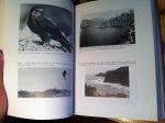 Walter, Hartmut - Eleonora's Falcon - Adaptions to Prey and Habitat in de Social Raptor