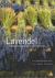 Anne Simonet-Avril - Lavendel