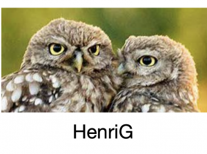 Logo HenriG