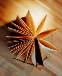 Logo boeksel