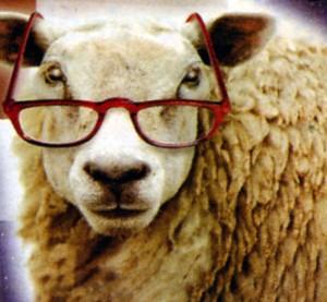 Logo Mouton