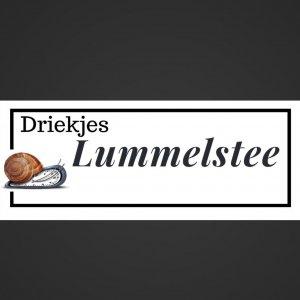 Logo Driekjes Lummelstee